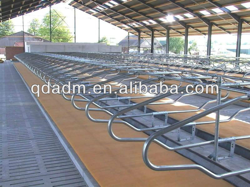 cattle free stall system